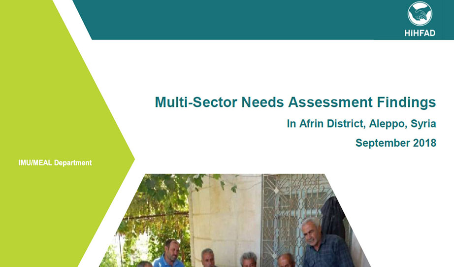 Multi-Sector Needs Assessment Findings